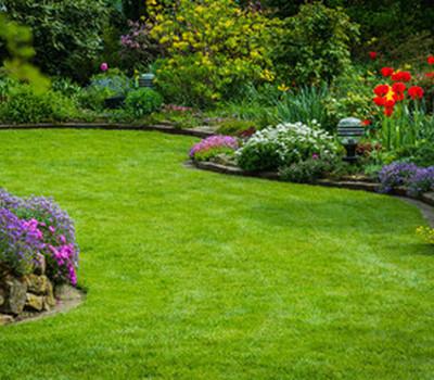 Centrale de location : Avec quoi déblayer son jardin à Sallebœuf ?